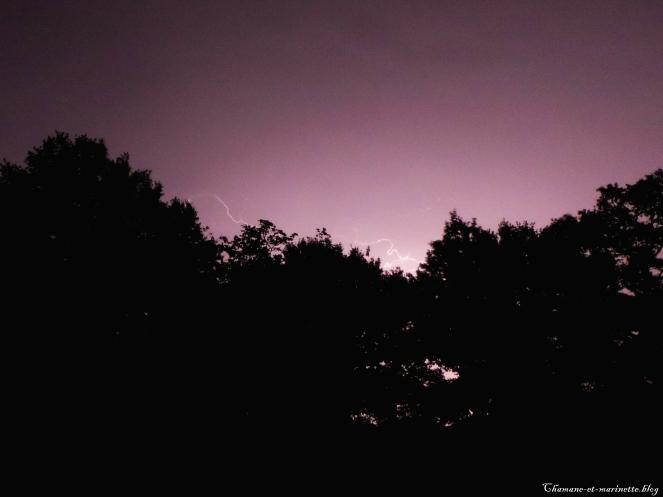 eclair-arbre-juin2017-chamaneetmarinette